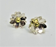 Silver Daisy Ecosilver and Fairtrade Gold Studs.